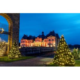 Château de Vaux le Vicomte fête Noël