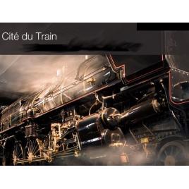 Cité du train Billet adulte, MULHOUSE