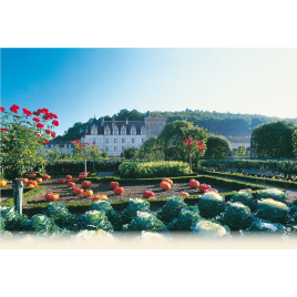 Château de Villandry  : Château + jardins
