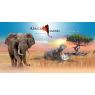 Zoo African Safari, Plaisance Du Touch