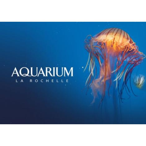 Aquarium de la Rochelle, La Rochelle , le 14/11/2020