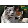 Touro zoo parc, Romanèche-Thorins