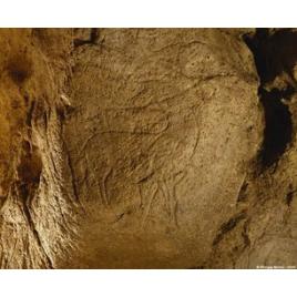 Grotte de Pair-non-Pair