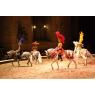 Domaine de Chantilly : spectacle équestre, Chantilly