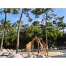 Zoo de La Palmyre, Les Mathes