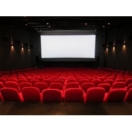 Chèques Cinémas CE (Le Prado à Marseille, Avignon,  ...)